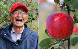 日本老人种出不腐苹果 引出健康的秘诀