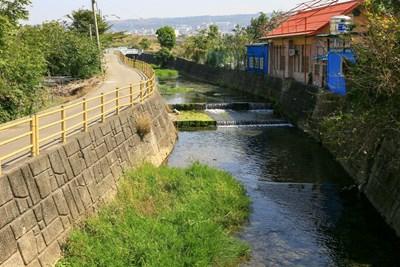 南勢溪可說是沙鹿的母親之河,提供居民生活中所有的需求,有取之不盡的湧泉。