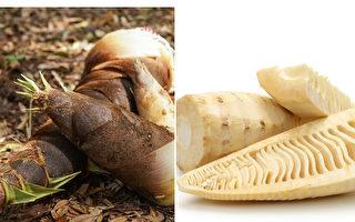 竹笋减重解毒、防肠癌 医师的4种笋食用攻略