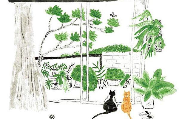 猫天下(1)箱座猫
