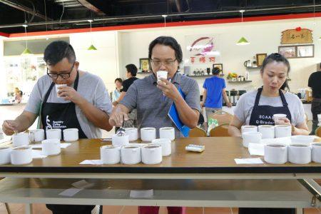 左起蘇晉寬、邱偉倫及彭婕汝等3位美國咖啡協會「咖啡品質鑑定師」,為國姓鄉咖啡農鑑定咖啡品質。