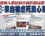 澳洲人體展 遺體被爆來自中國良心犯