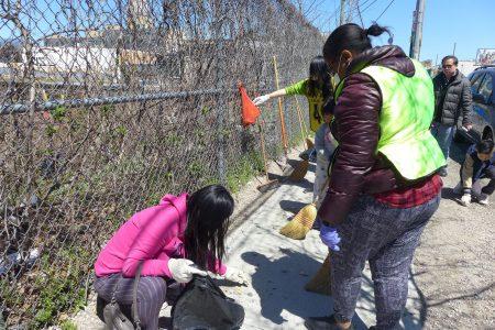 市議員萬齊家辦公室社區事務主管葉凌霞(左)戴著手套在地上撿煙頭。
