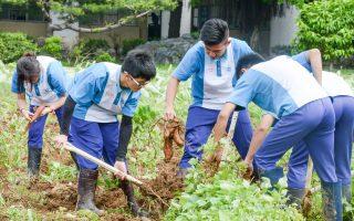 桃園全力配合「獎勵高中生從農方案」 培養新農民