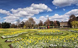 復活節「與彼得兔相約」倫敦皇家植物園