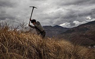 中共农业部长罕见承认 40年来农村萧条凋敝