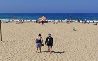 高溫再來襲 未來三天悉尼氣溫均超30度