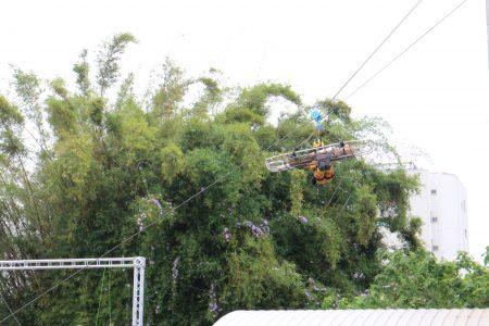高空吊掛搶救。