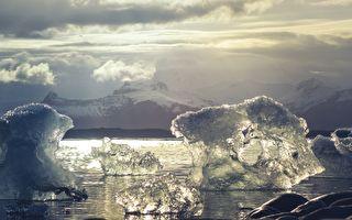 超罕见南极海底世界曝光 可爱海豹意外入镜