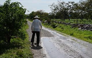 万里寻根路 离家43年非洲农耕队员跪回家门