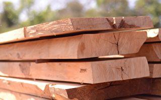 透过木工的朴拙之眼,深入北欧匠人精神世界(3)