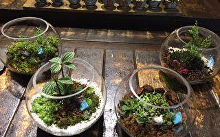藝食旅之趣 :遊「金瓜石」體驗綠手指藝術