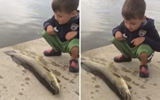 """小男孩被鱼""""打脸"""" 惊呆萌样让爸爸哈哈大笑"""