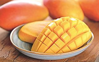 芒果有毒?還原芒果真相