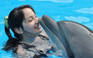 為國犧牲? 傳間諜海豚被俄抓走後集體絕食亡