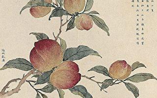 種桃李得桃李 種蒺藜得利刺