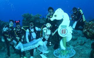 世界最深 绿岛豆丁海马海底邮筒启用