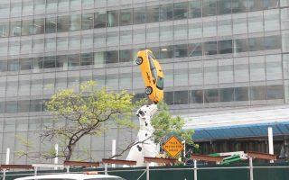 狗狗鼻子顶计程车 纽约街头新装置艺术