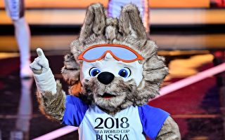 组图:俄罗斯世界杯吉祥物--扎比瓦卡
