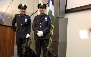 反恐局警犬部结训典礼  12新警与警犬加入反恐维安