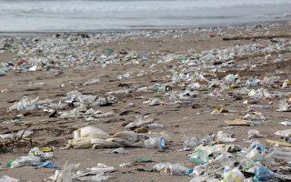 世界环境日 澳人被促放弃塑料制品