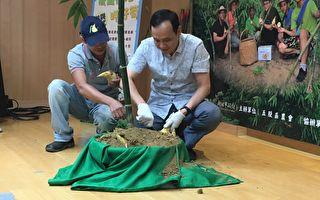 新北綠竹筍產量上看17億元 農業局推限量一日遊