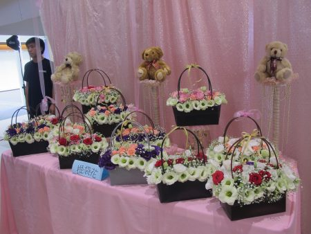 美丽的提袋花。