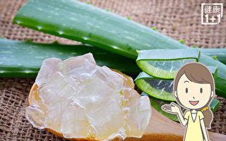 芦荟胶天然抗老、促生发 护肤养发3个配方