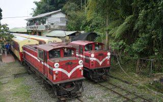 阿里山郵輪列車8月開航 帶動林鐵生態旅遊