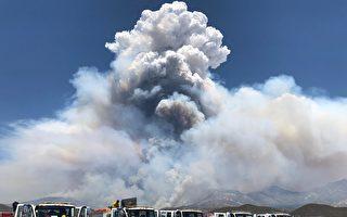 纵火犯导致内陆大火 州长宣布紧急状态