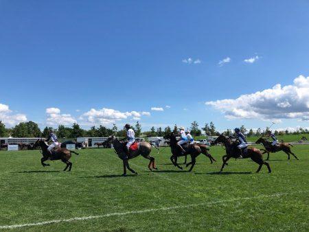 """被称为""""绅士运动""""的经典马球赛8月4日在曼哈顿总督岛举行。"""