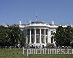 白宫任命斯托奇為新的高級貿易顧問