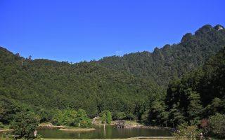 北橫明珠明池 棲蘭神木生態之旅