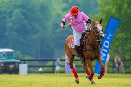 """被称为""""绅士运动""""的经典马球赛7月14日在纽约州帕特森(Patterson)举行。图中蓝色刀旗NTD.TV代表英文新唐人。"""