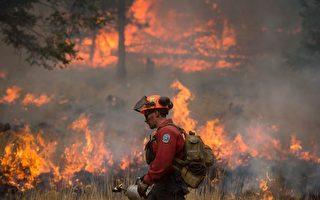 今年夏季,卑詩省遭受了約1,950起山火的侵擾,其中420多起是可以避免的人為火災。(加通社)