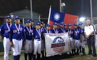 小馬聯盟中華隊奪冠  小將宋柏翰獲最佳打擊獎