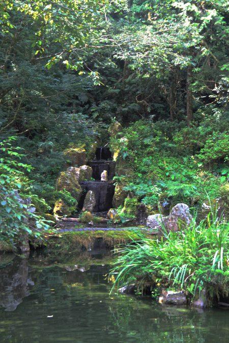 禅庭-蹲坐静观。