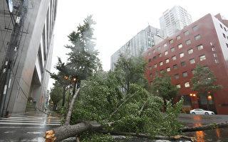 25年来最强台风燕子袭日 关西机场淹水封闭
