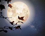 【品讀唐詩】盛唐詩人遇見的月光