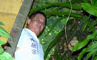 虎頭蜂窩在我家 外埔養蜂達人解迷津
