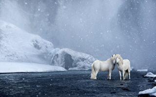 摄影师拍下冰岛绝美仙境 主角活泼可爱好梦幻
