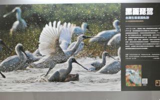 經典雜誌創刊20年  捕捉歷史的壯遊攝影展