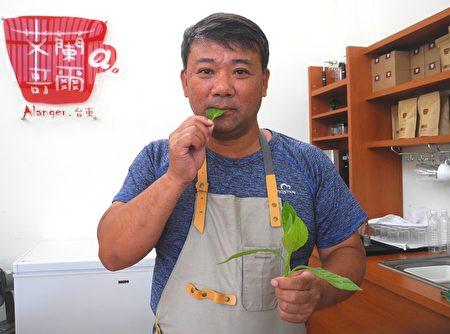 张弘典介绍自然农法生产的阿比野菜