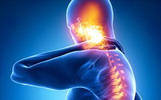 【预防骨质疏松】Live2move有机海藻钙有效治疗骨质疏松