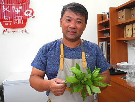 张弘典介绍自然农法生产的阿比野菜。