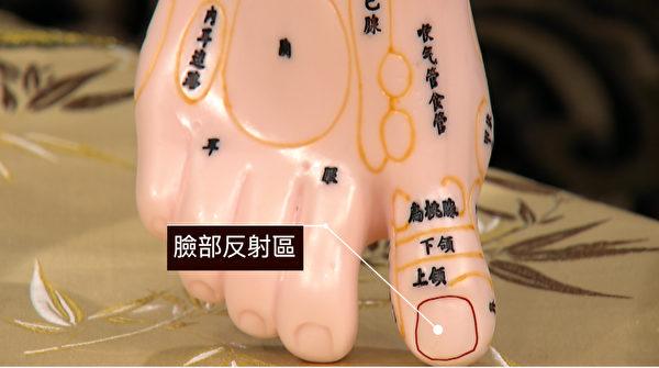 脚背姆趾趾甲处为脸部反射区,按压此处可美容养频。(谈古论今话中医提供)