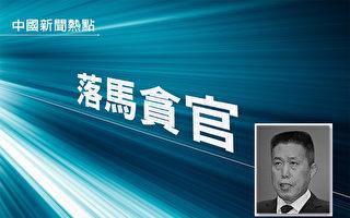 武汉黄陂原政法委书记被指当黑势力保护伞