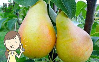 梨是神奇中药 能退热、止咳、治烫伤