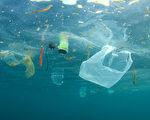 日本480公里外海深處 發現大量塑料垃圾