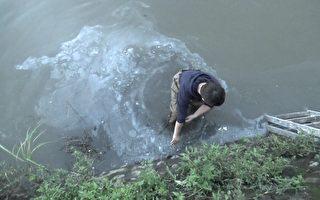 停工猪场再一家 林国桢养猪场绕流排放废水